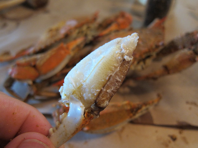 Crabbing et al 067