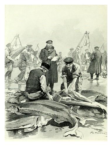 018-Obteniendo caviar en Astrakhan- Provincial Russia-1913- F. de Haenen