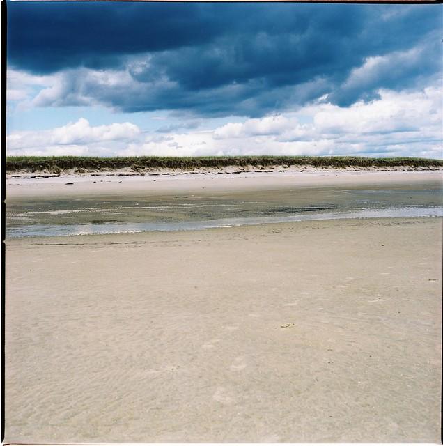 dune lines.