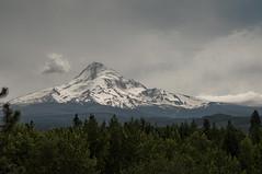 Mt Hood (-sarma-) Tags: oregon portland or mthood pdx portlandor mounthood