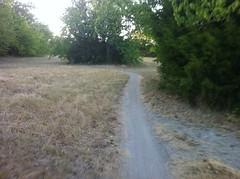 Singletrack in the Field