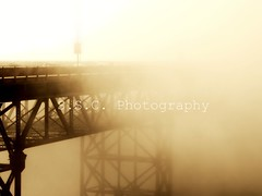 Foggy Bridge (ShannonClarkPhotography) Tags: sanfrancisco bridge brown metal fog sepia intense structure creepy goldengatebridge mysterious picnik eery