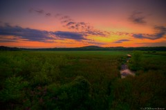 Great Meadows Sunset
