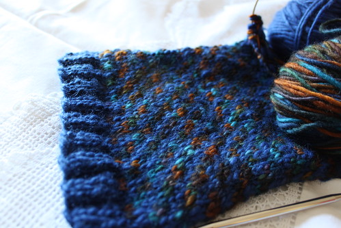 "WIP - Cowl ""Owl and the Sky"""