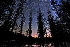 Arrows in the Stars (Dylan MacMaster) Tags: tree silhouette pine oregon startrails lightpollution anthonylakes singleexposure