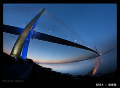 J41D Normandy's bridge (Emmanuel DEPARIS) Tags: nikon fisheye pont normandie nuit emmanuel deparis