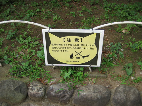 Do not feed the cats!