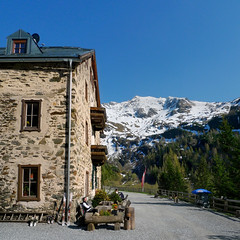 Waiting for your breakfast at Ammererhof Alpine Guest Hotel (Bn) Tags: park blue shadow sky sun snow mountains alps green nature water walking geotagged heidi austria golden spring woods topf50 rocks afternoon eagle farmers hiking farm wildlife meadows falls adventure evergreen alpine national valley goldenvalley gras rays peaks lush spar spruce larvae finest seekers birdofprey guesthouse marmots hohe rauris lariks unspoilt tauern 50faves kolmsaigurn hohersonnblick rauristal bartgeier beardedvulture 1650m alpengasthof ammererhof geo:lat=47069274 bucheben saariysqualitypictures 3106m dastaldergeier thekingsoftheair highsonnblick geo:lon=12985207 kolmsaigum