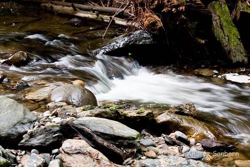 Moss Glen Brook, Stowe, VT-13-1.jpg