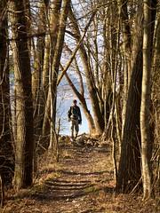 Murtensee 57 (fcharriere) Tags: lake switzerland raw lac olympus roseaux oiseaux morat canards murten murtensee roseraie lacdemorat e620 aperture3 fredericcharriere caricaie