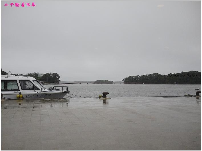 仙台松島遊船餵海鷗-13.jpg