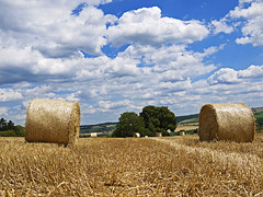 Bales are back (RainerSchuetz) Tags: field clouds harvest bales stubblefield balesofstraw blinkagain