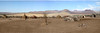 Himba Village Purros (Lauren :o)) Tags: village desert tribal tribe namibia himba purros