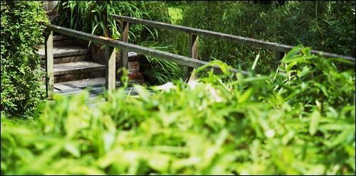 Leica M8 Zeiss 50mm f/2 T* Planar