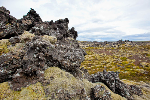 Icelandic Moss Covers Lava Rocks