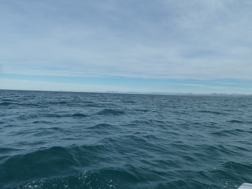 Looking landward