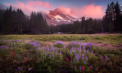 Re Inspired ~ Jefferson Park Sunset (Jamey Pyles) Tags: pink sunset mountain clouds oregon volcano heather alpine mtjefferson cottoncandy jefferson wildflowers lupine indianpaintbrush mountainlight jameypyles