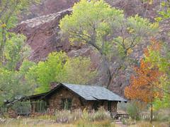 creek grandcanyon lodge coloradoriver destination riparian phantomranch