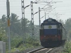 Nagercoil Kochuveli Passenger (Karthik Abbilash) Tags: india train ed track rail passenger sr trivandrum nagercoil erode indianrailways irfca 11171 southernrailways wdm3d kochuveli