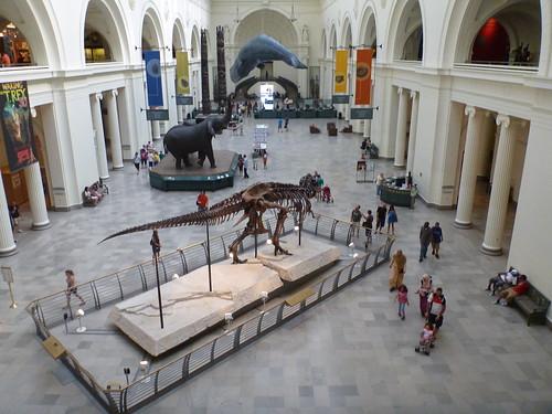 Field Museum, Chicago, Illinois