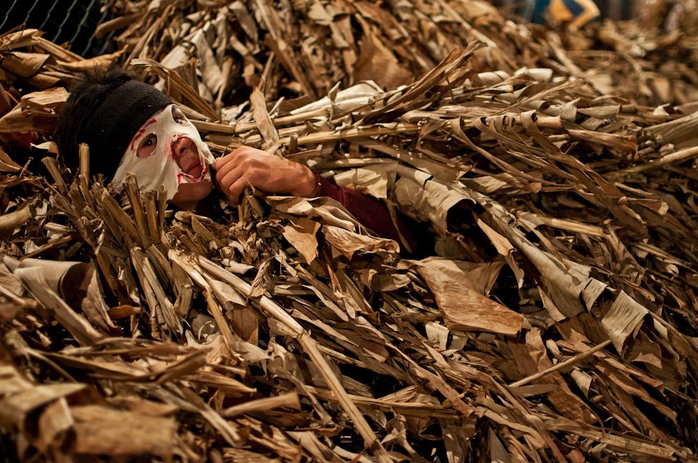 """Imágenes de Junio y Julio del 2011, otra entrega de Yluux sobre distintas festividades y tradiciones en estos meses. Un muchacho disfrazado de Guaicurú se acuesta en el césped mientras espera su turno para correr y perseguir a las mujeres que participan del juego tradicional de la fiesta de San Pedro y San Pablo en el predio de una Capilla de la compañía Itaguazú de la Ciudad de Altos, Departamento de Cordillera. Lugar en donde se realiza el ritual de Kambá Ra´anga (imagen del negro) en el cual los protagonistas se visten con prendas hechas de hojas de banano, portan máscaras de madera y danzan al compás de la música de un grupo de nombre """"banda para´i"""" (de colores). Esta realización representa una ceremonia de iniciación, por ejemplo, el más conocido: el rapto perpetrado de alguna doncella por parte de un Guaicurú. (Elton Núñez)"""