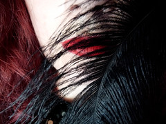 274 - 11 - 02 (P. Mockingjay) Tags: red white inspiration black macro hair myself movie book mac autoportrait feather games suzanne lips hunger lipstick lover russian inspire collins birdgirl mockingjay thegirlwiththebread