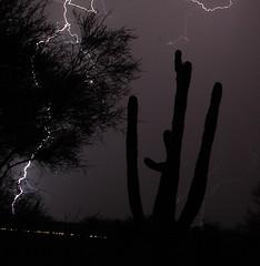 Tucson monsoon (searchnetmedia) Tags: arizona cloud storm nature weather clouds desert tucson monsoon thunderstorm storms thunderstorms arizonathunderstorms arizonathunderstorm