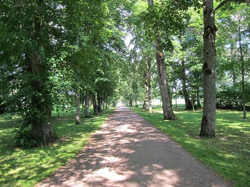 Louhisaaren puistotie by Anna Amnell