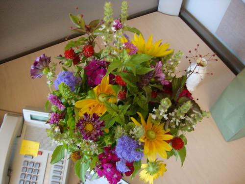 princeton farmer's mkt flowers 7/21/11