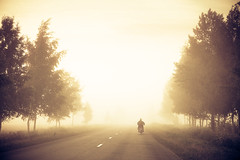 (dSavin) Tags: road trip trees mist man male fog forest hope back fisherman russia spin helmet motorcycle motorcyclist  magiclight 2011     goldenfog  yaroslavlregion