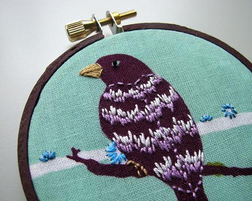 aviaryclosepurplebird