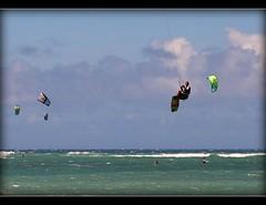 kiteboarding (pmenge) Tags: hawaii maui 24105l duetos frenteafrente 5dii kiteboardingschoolbeach