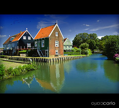 Holland 3 (ocarlo) Tags: holland verde green heron netherlands nikon blu thenetherlands bleu explore carlo 24mm fullframe fx sigma1224mm olanda zaanseschans wow1 airone colorphotoaward d700 oltusfotos saariysqualitypictures mygearandme mygearandmepremium mygearandmebronze mygearandmesilver riccarlo artistoftheyearlevel3