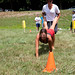 ASAP's Second Annual Fort Orange Olympics - Albany, NY - 2011, Jul - 25.jpg by sebastien.barre