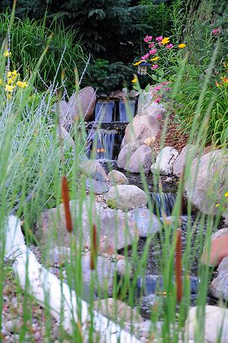 Day 200 - Flower Garden by Tim Bungert