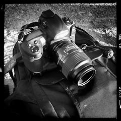Nikon D3 + Nikon 105mm f/2.8 Micro (aixcracker) Tags: suomi finland nikon 4 august lovisa iphone augusti loviisa 105mmf28dmicro elokuu nikond3