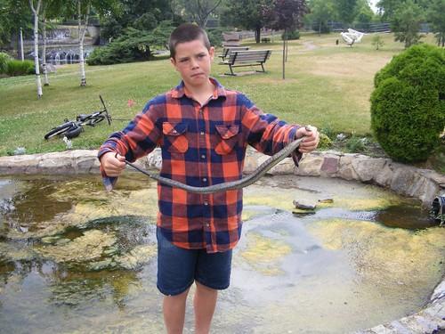 The snake wrestler