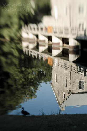 223:365 Reflections of Watson's Mill