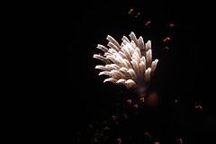 fireworks 2010 033 (TaylorAW5) Tags: fireworks2010