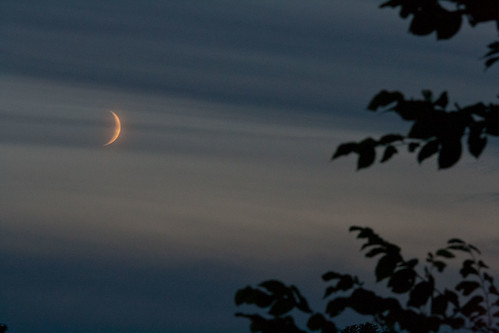Risen crescent moon