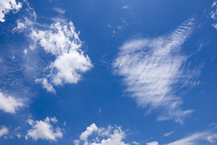 Clouds look like lion and sheep [explored] (e.nhan) Tags: life blue light sky art nature clouds landscape cloudy backlighting enhan
