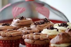 Ciara's Cupcakes (Mic_Hay) Tags: cake cupcakes chocolate cupcake buns