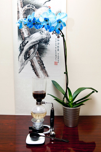 Siphon Coffeemaker with the Blue Diamond Orchids