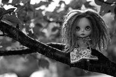 One Little Redhead Sitting in a Tree - 220/365 ADAD 2011