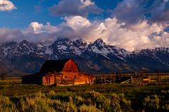 Mormon Row, Grand Teton National Park, Jackson Hole, Wyoming, USA. (Flash Parker) Tags: morning usa sunrise wyoming grandtetons jacksonhole mormonrow moultonbarn 52weeksinthespc usa657942