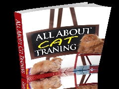 cat-training-cover_240x180