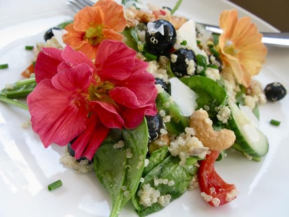 nasturtium quinoa salad 002