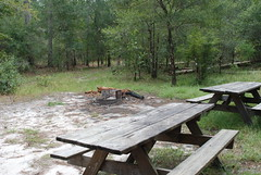 Camping area (floridahikes) Tags: camping river florida hiking oxbow stateforest floridahikes withlacooochee