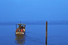 Blues Kerala Thevara (Anoop Negi) Tags: blue portrait sky india water photography for boat photo media image photos delhi indian bangalore creative kerala images best indie po mumbai cochin anoop indien ernakulam inde negi インド 印度 índia photosof הודו 인도 ezee123 độ intia thavera الهند ấn bestphotographer هندوستان индия imagesof anoopnegi індія بھارت индија อินเดีย jjournalism ינדיאַ ãndia بھارتấnđộינדיאַ indiã