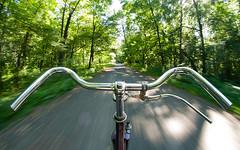 Cruisin' around (Mario (_)) Tags: travel fish bicycle speed forest driving pentax path fisheye 8mm nohands k7 uma samyang bicikl justpentax